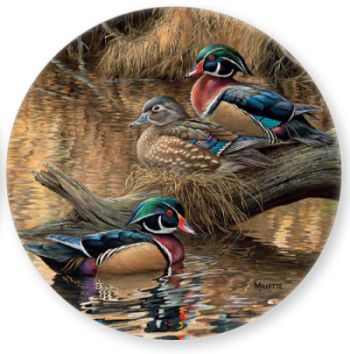Coaster Set of 4- Sitting Pretty  Wood Ducks