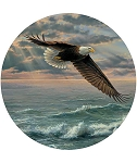 Coaster Set - Eagle